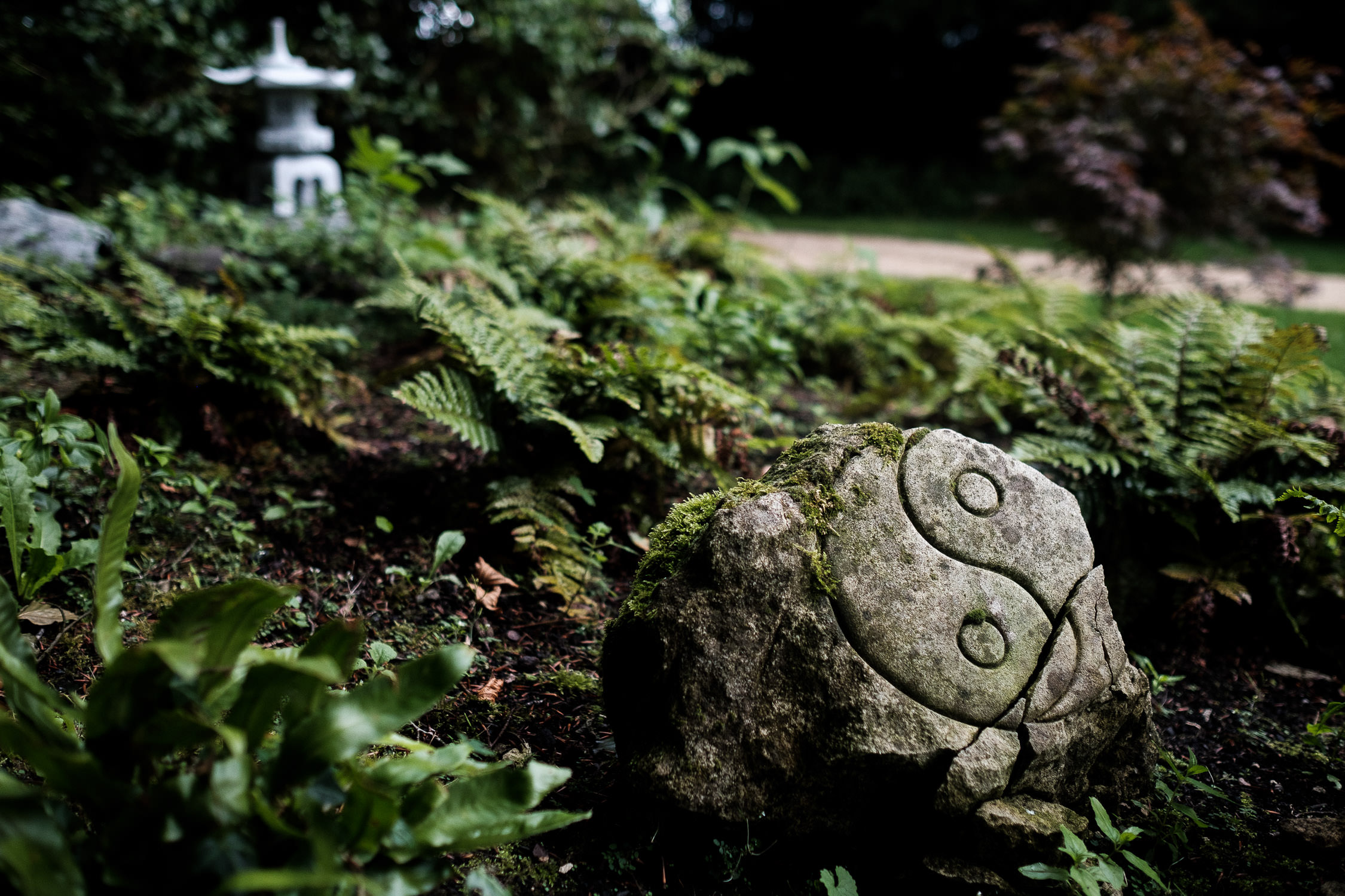 rock with yin yang symbol